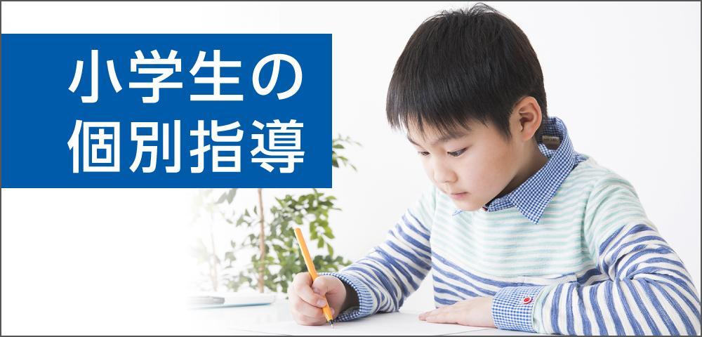 main_img_elementary.jpg